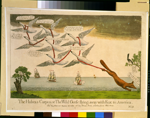 The Habeas Corpus, Or The Wild Geese Flying Away With Fox To America Image