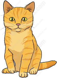 Cat orange. Tabby clipart free images