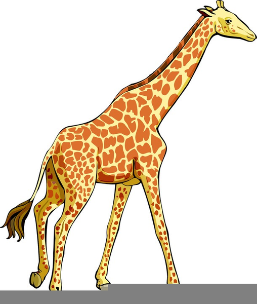 cute baby giraffe clipart free images at clker com vector clip rh clker com giraffe clipart free giraffe clipart baby