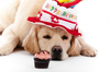 Birthday Clipart With Dogs Image