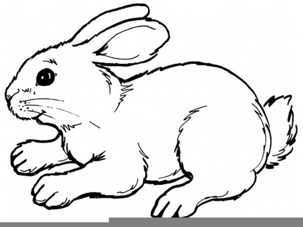 Clipart Running Rabbit Free Images At Clker Com