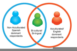 acculturation based on various conversations Typical examples of cultural differences the perception is different and often selective: expressions are differentiated according their importance: for the inuits (eskimos) snow is part of their everyday life, therefore many words (e g over 10 substantives) exist to describe it.
