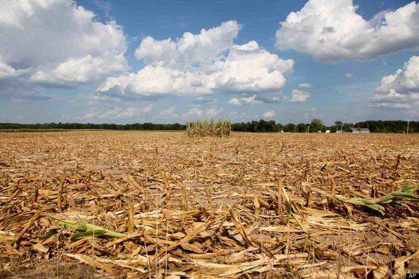 Soil Earth Ecoregion Drought Erg, earth, landscape, aeolian Landform png |  PNGEgg