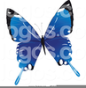 Free Clipart Butterfly Black White Image