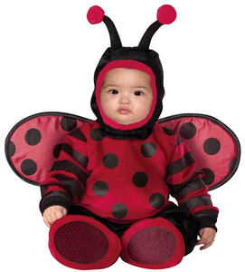Baby And Toddler Itty Bitty Lady Bug Costume Large Image