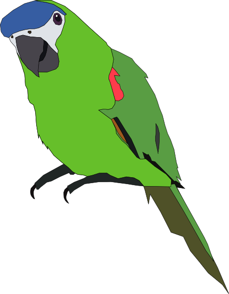 Totetude Parrot Green Clip Art at Clker.com - vector clip ...