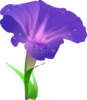 Morning Glory Flower Clip Art