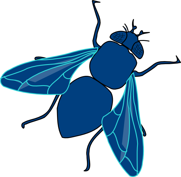 Blue Fly Clip Art at Clker.com - vector clip art online, royalty free ...