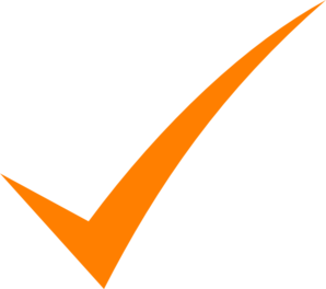 Check Mark Orange Clip Art