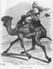 Camel Rider Black And White Image