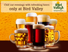 Bird Valley Evening Party Image