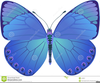 Royalty Free Butterfly Clipart Image