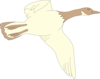 Cream And Brown Flying Goose Clip Art