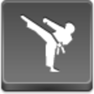 Free Grey Button Icons Karate Image