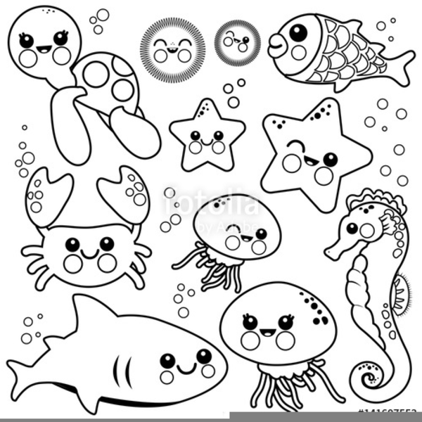 Marine Life Clipart Free Images At Clker Com