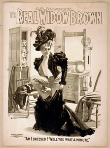 A.q. Scammon S The Real Widow Brown Image