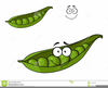 Peas In A Pod Clipart Image