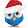 Christmas Bird 2 Image