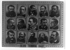 Beard Trimming Chart Image