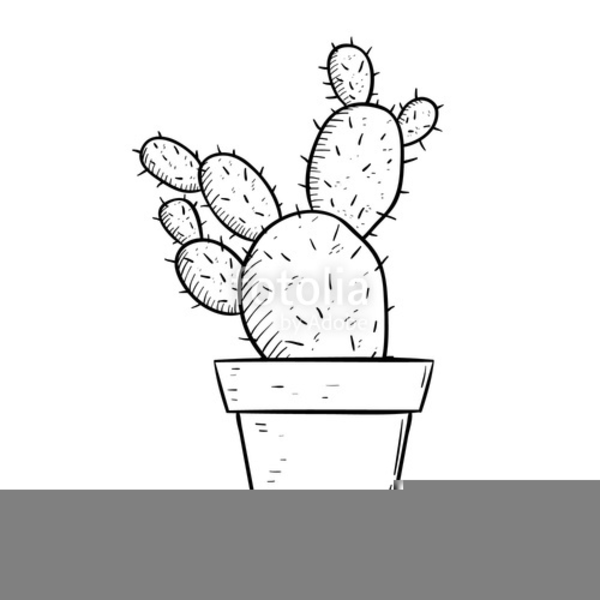 Flower pot drawing for cl 2 flowers healthy flower pot clipart black and white free images at clker mightylinksfo