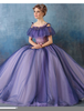 Fashion Ball Gowns Image