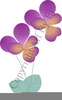 Free Pansy Clipart Image