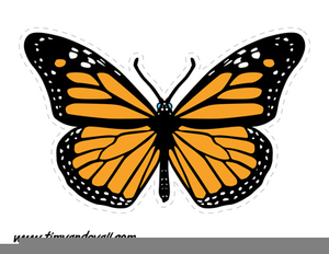 photo about Free Printable Clipart identify Printable Butterfly Clipart Totally free Visuals at