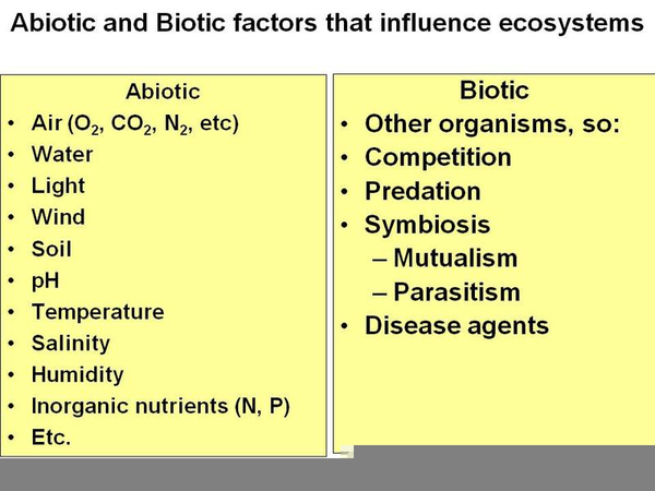 abiotic factor examples | free images at clker - vector clip art