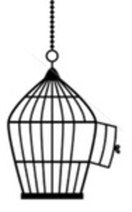 Cage Image