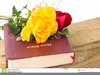 Free Clipart Of Holy Bible Image