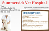 Pets Health Treatment South Edmonton Animal Hospital Image
