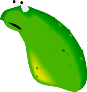 Frog With No Legs Clip Art
