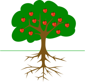 Apple Tree With Roots Clip Art
