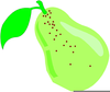 Pear Clipart Images Image