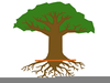 Tree With Roots Clipart Image