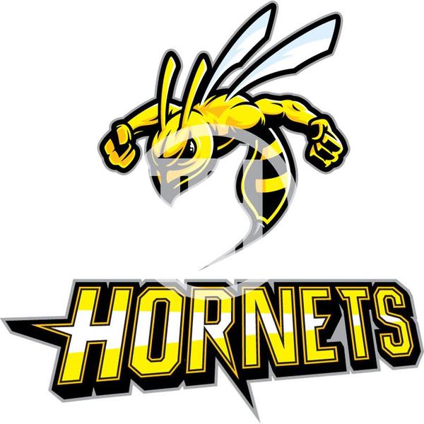 Hornet Mascot Clipart Free Images At Clker Com Vector Clip Art