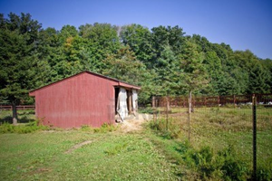 Old Run Down Wooden Barn In Front Of Trees And Fence Image