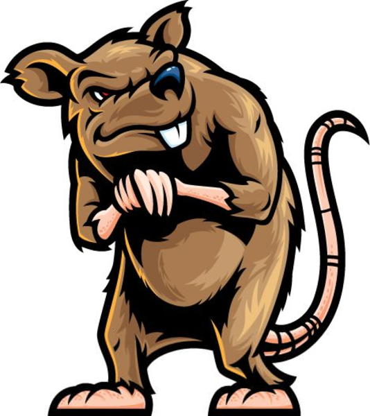 Clip Art: mouse rat raton art clipartist.net  - ClipArt