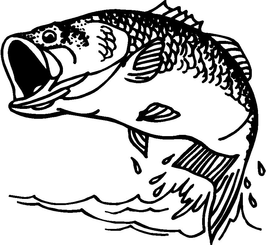 fish clipart drawing - photo #36