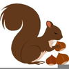 Squirrel Gathering Nuts Clipart Image