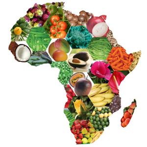 Map Of Africa Art.Africa Map Logo Free Images At Clker Com Vector Clip Art Online