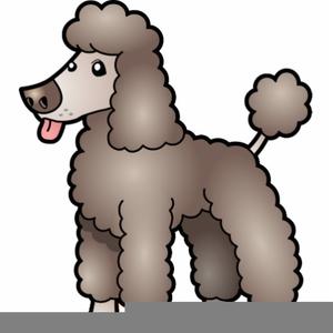 Poodle Clip Art - Royalty Free - GoGraph