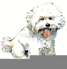 Free Clipart Cats And Dogs Image