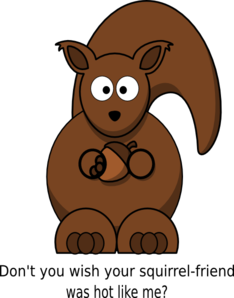 Squirrel For Fun Clip Art
