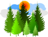 Pine Tree Grouping 2 Clip Art