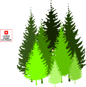 Pine Tree Grouping By Atom Clip Art