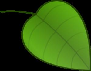 single jungle kostenlos Aalen