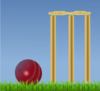 Cricket Illustration Clip Art