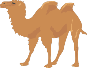 camel clip art at clker com vector clip art online royalty free rh clker com camel clip art images camel clipart patterns