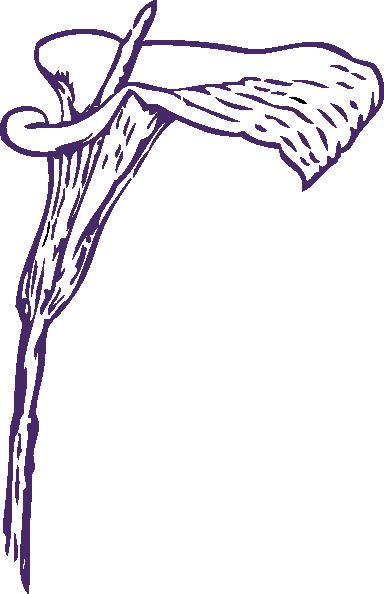 Purple Calla Lily Clip Art at Clker.com - vector clip art online ...